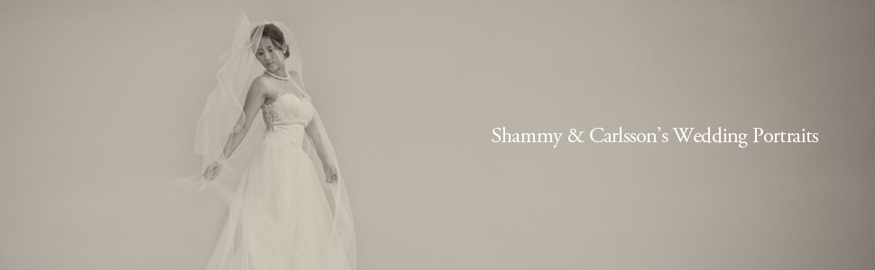 Shammy & Carlsson Wedding Portraits