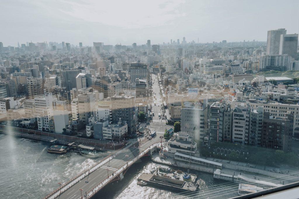 Overlooking Tokyo